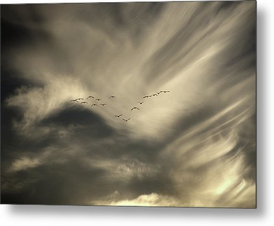 Metal Print featuring the photograph Flight 016 Westbound by Robert Geary