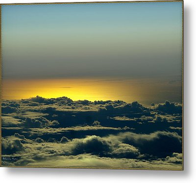 Flight Metal Print by Gerry Tetz