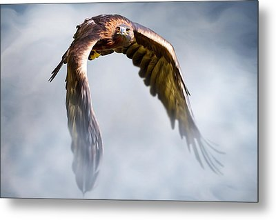 Flight Of Fancy Metal Print by Julie L Hoddinott