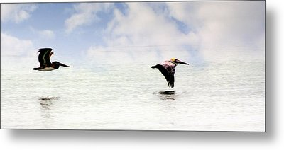 Flight Of Thepelicans Metal Print by Marty Koch