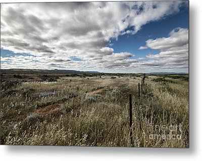 Metal Print featuring the photograph Flinders Ranges Fields V2 by Douglas Barnard