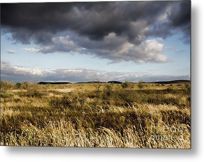 Metal Print featuring the photograph Flinders Ranges Fields V3 by Douglas Barnard
