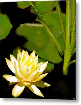 Float Of Elegance  Metal Print