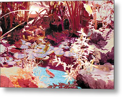 Floating Lilies Pads Above The Koi. Metal Print by Judy Loper