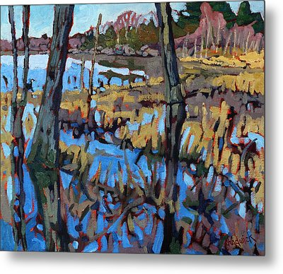 Flooded Land Metal Print by Phil Chadwick