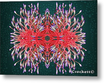 Floral Display Metal Print