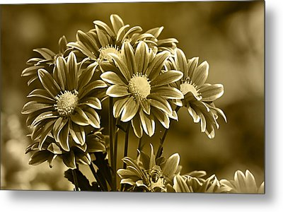 Floral Gold Collection Metal Print by Marvin Blaine