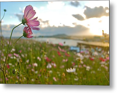 Floral Sunset Metal Print by Yen