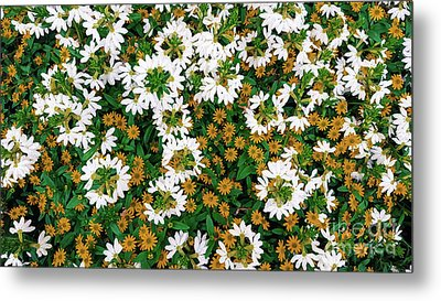 Floral Texture In The Summer Metal Print