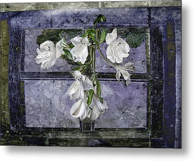 Metal Print featuring the photograph Floral Window Frame by Bonnie Willis