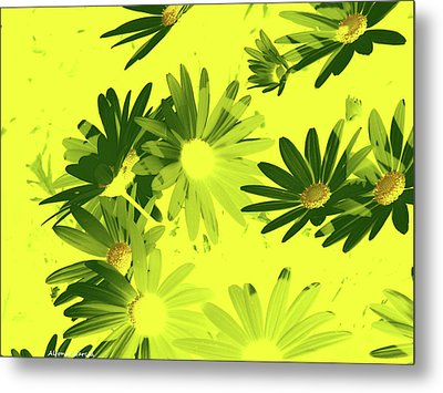 Metal Print featuring the photograph Flores De Primavera by Alfonso Garcia