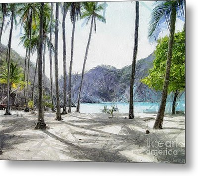 Florida Beach Metal Print by Murphy Elliott