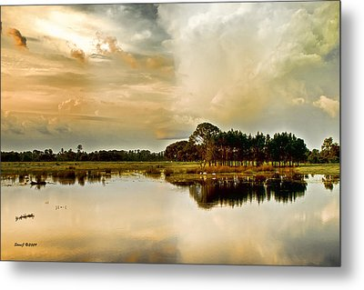 Florida Bird Pond Metal Print