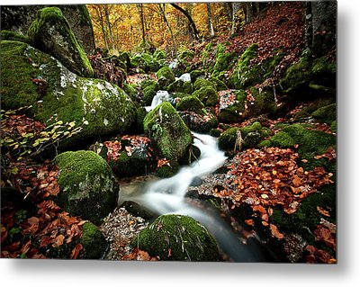 Metal Print featuring the photograph Flow by Jorge Maia