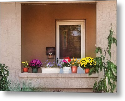 Flower - Still - Thinking Of Spring Metal Print by Mike Savad