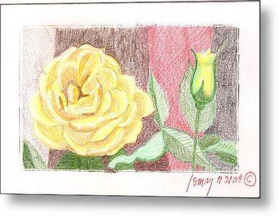 Metal Print featuring the drawing Flower 4 - Yellow Rose And Bud by Rod Ismay
