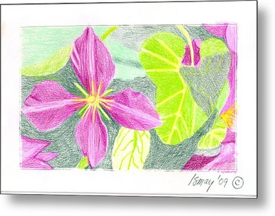 Metal Print featuring the drawing Flower 5 - Purple Clematis by Rod Ismay