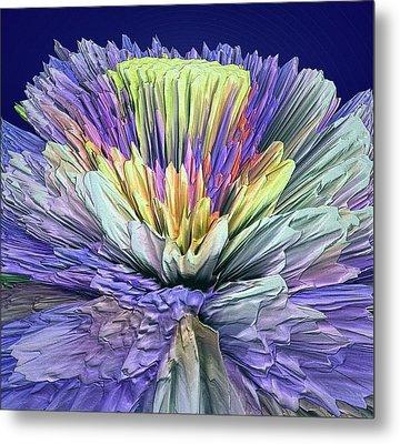 Flower Boost Metal Print by Yury Malkov