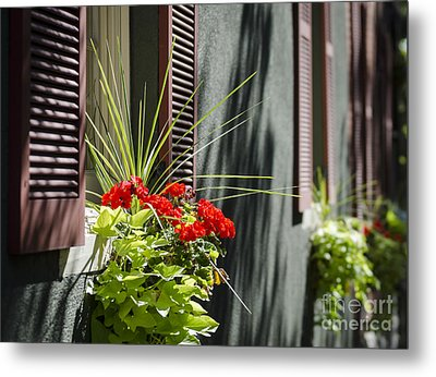 Metal Print featuring the photograph Flower Box by Andrea Silies