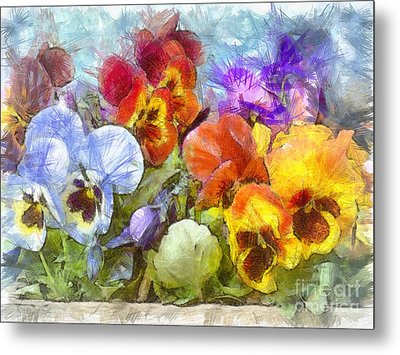 Flower Box Full Of Pansy Pencil Metal Print by Edward Fielding