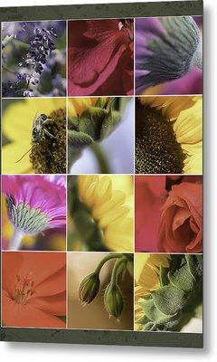 Flower Dozen Metal Print by Janet Fikar