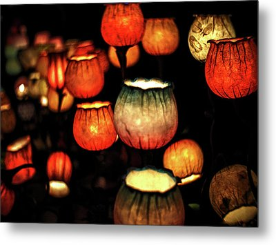 Flower Lamps Metal Print by Carol Crisafi