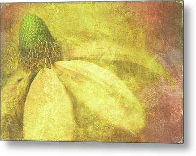 Flower Magnifico Metal Print by JQ Licensing
