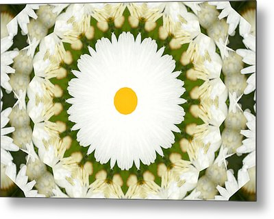 Metal Print featuring the photograph Flower Mandala - A by Anthony Rego