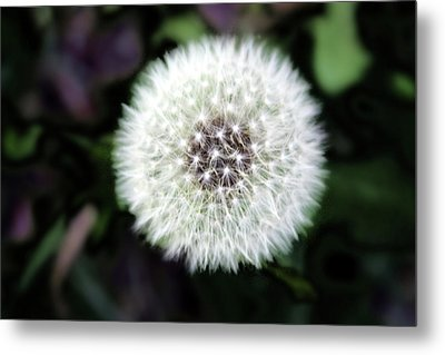 Flower Of Flash Metal Print by Mark Ashkenazi