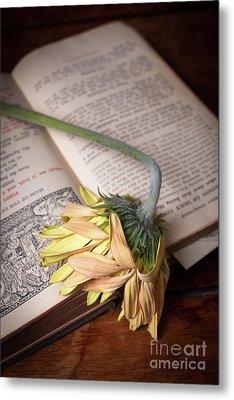 Flower On Old Bible Metal Print by Edward Fielding