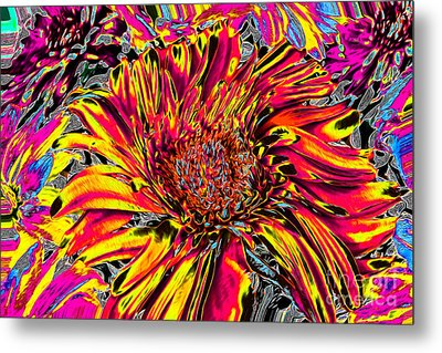 Flower Power II Metal Print