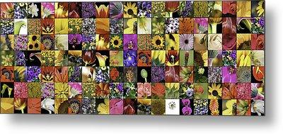 Flower Power Pano Metal Print by Janet Fikar