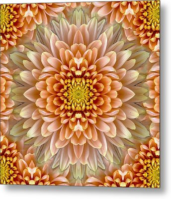Flower Power Metal Print by Sumit Mehndiratta
