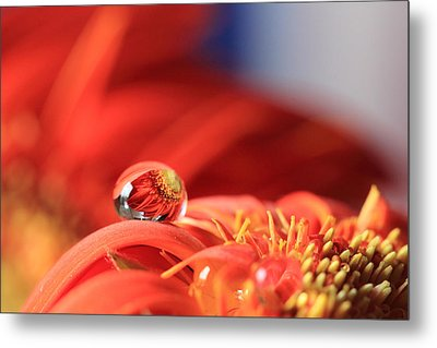 Flower Reflection In Water Drop Metal Print