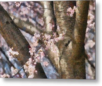 Flower - Sakura - Spring Blossom Metal Print by Mike Savad