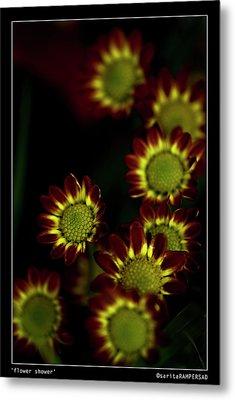 Flower Shower Metal Print by Sarita Rampersad