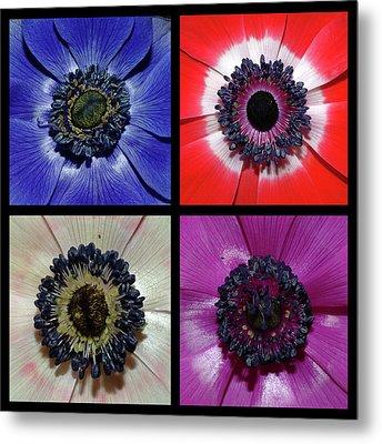 Flower Square Montage - Anemone Metal Print
