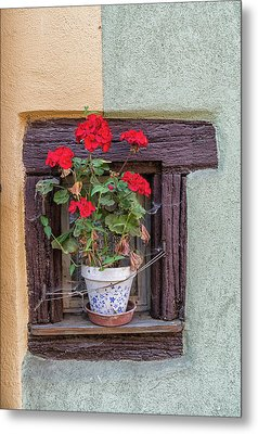 Metal Print featuring the photograph Flower Still Life by Alan Toepfer