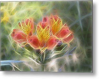 Flower Streaks Metal Print