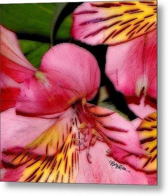 Flowers # 8728_1 Metal Print by Barbara Tristan