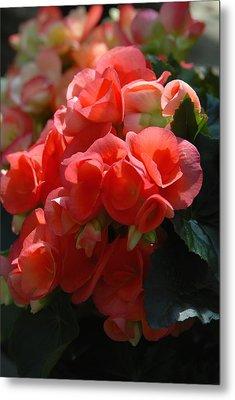 Flowers 160 Metal Print by Joyce StJames