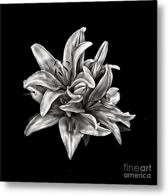 Flowers 8449 Metal Print by Walt Foegelle