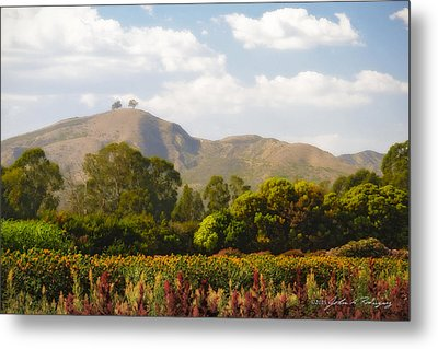 Metal Print featuring the photograph Flowers And Two Trees by John A Rodriguez