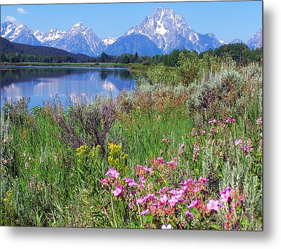 Flowers At Oxbow Bend Metal Print