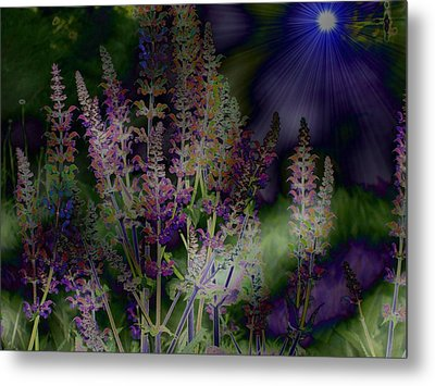 Flowers By Moonlight Metal Print by Barbara S Nickerson