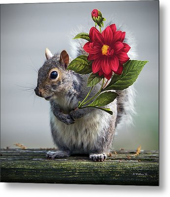 Flowers For You Metal Print by Brian Wallace