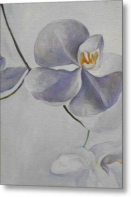 Flowers Frame 1 Metal Print by Min Wang