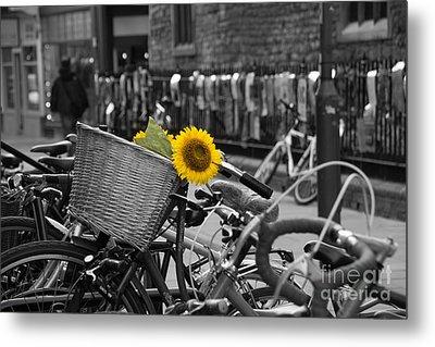 Flowers In Bike Metal Print by David Warrington