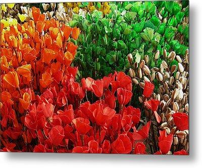 Flowers Metal Print by Mohammed Nasir