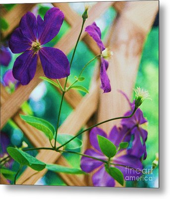 Metal Print featuring the painting Flowers Purple by Eric  Schiabor